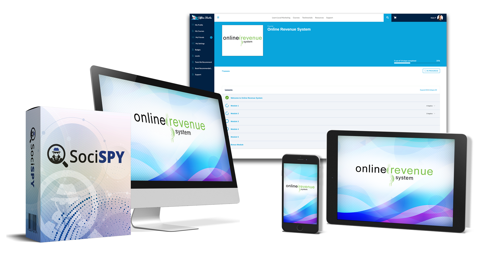 Online Revenue System Review